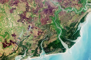 Il delta del fiume Zambesi (fonte: modified Copernicus Sentinel data (2016), processed by ESA, CC BY-SA 3.0 IGO) (ANSA)